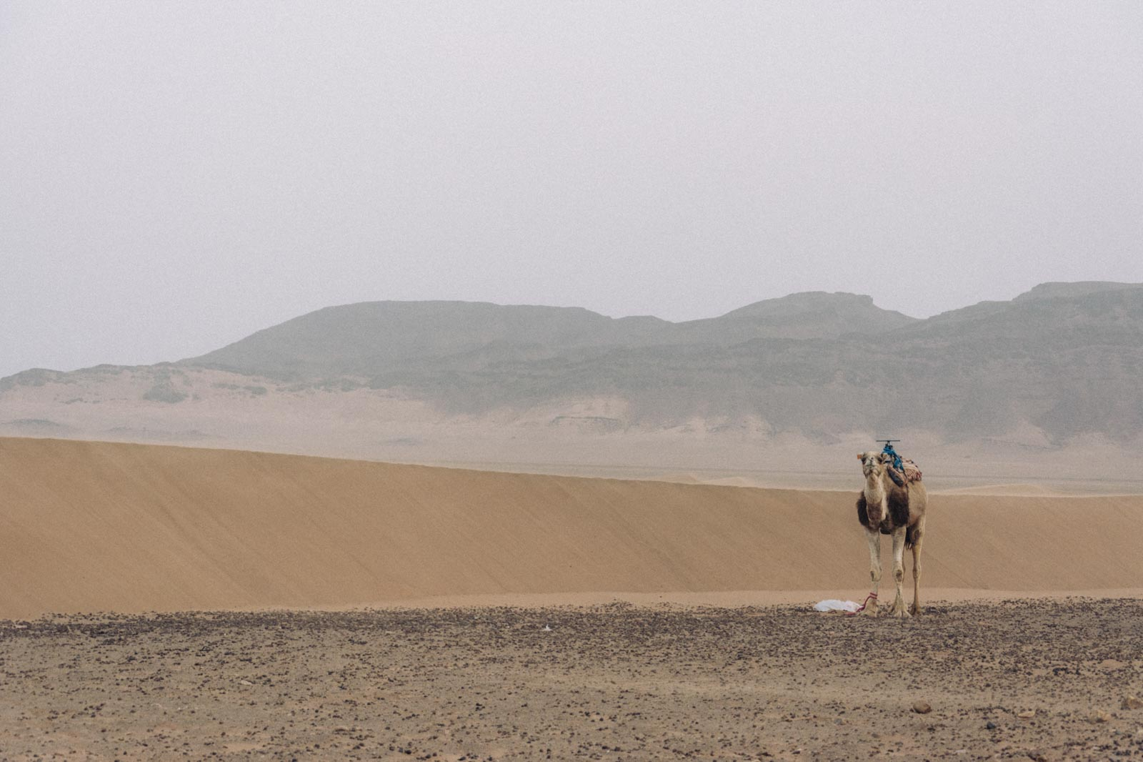 photography-marrakech-deserts-16